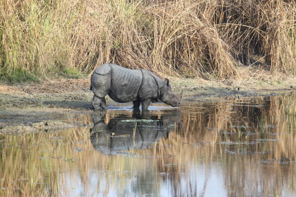 Chitwan National Park Nepal - Nepal - Atma Asia Travel