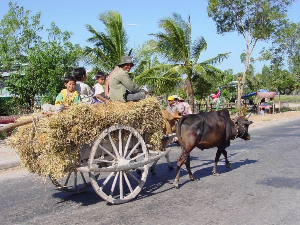 Homestay in Kampong Thom - Cambodja - Atma Asia Travel