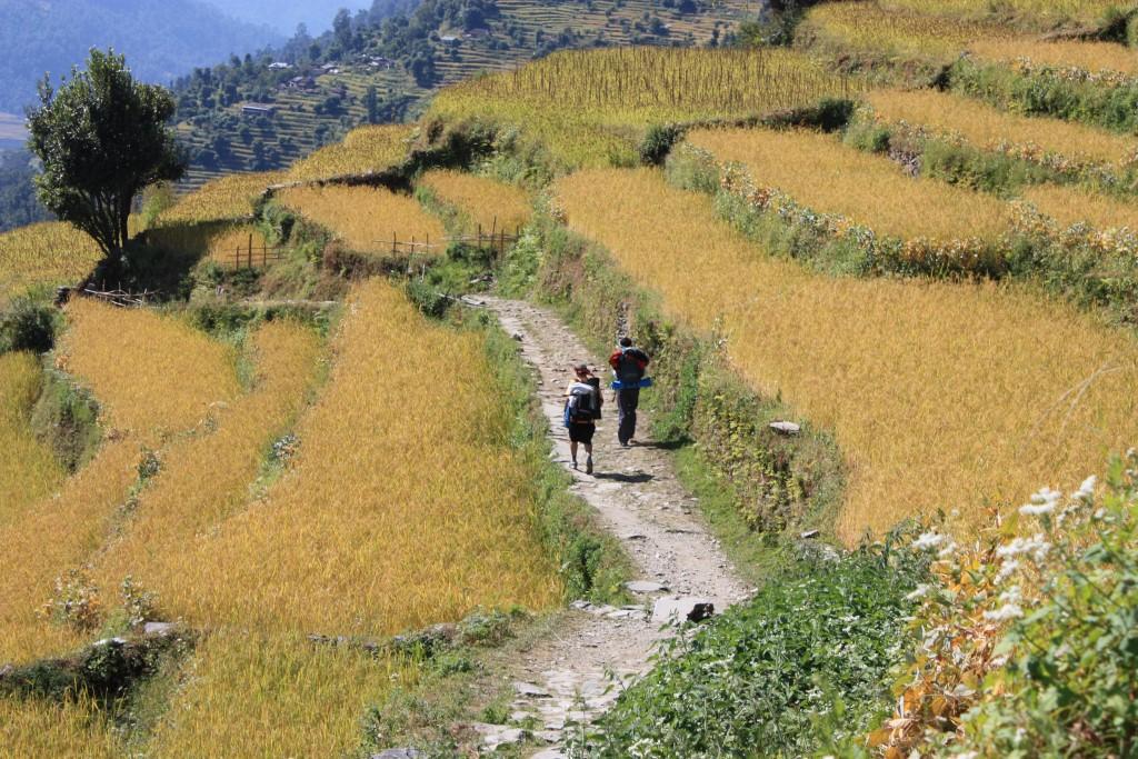Rondreis Nepal met een korte trektocht - Nepal - Atma Asia Travel