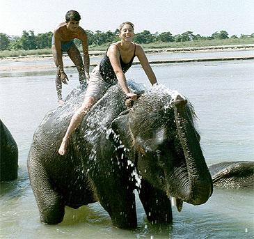 Jungle Safari - Atma Asia Travel